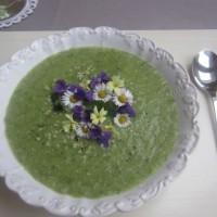 Pomladna krompirjeva juha s porom in koprivami