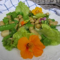 Solatni krožnik z mladim krompirjem in sladkim grahom
