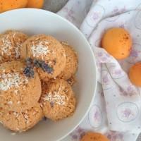 Marelični sladoled v stilu granite s kokosom, cimetom in ingverjem